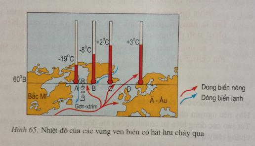 Giải bài tập Địa lý lớp 6 Bài 25: Thực hành: Sự chuyển động của các dòng biển trong đại dương<