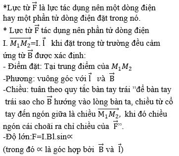 giai ly lop 11 bai 20 luc tu cam ung tu 1 - Giải Lý lớp 11 Bài 20: Lực từ. Cảm ứng từ